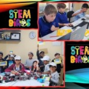 STEM Birds Australia Coding kids!